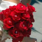 Rote Rosen der Liebe