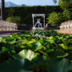 Fountains in a pond by an outdoor ceremony